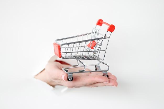 Ręka wyciągająca metalowy kosz na zakupy z podartego papieru