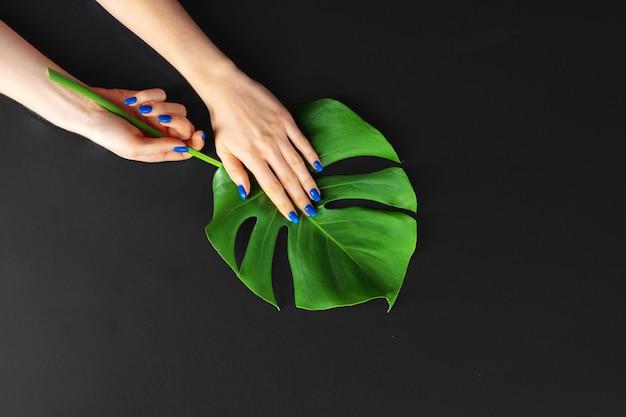 Ręka z klasycznymi niebieskimi paznokciami do manicure na liściu monstera. kreatywne zdjęcie