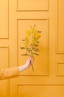 Ręka z kwiatowymi gałęziami