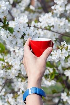 Ręka z zegarkiem trzyma porcelanową filiżankę kawy z kwitnącą wiśnią w tle. selektywne skupienie się na filiżance