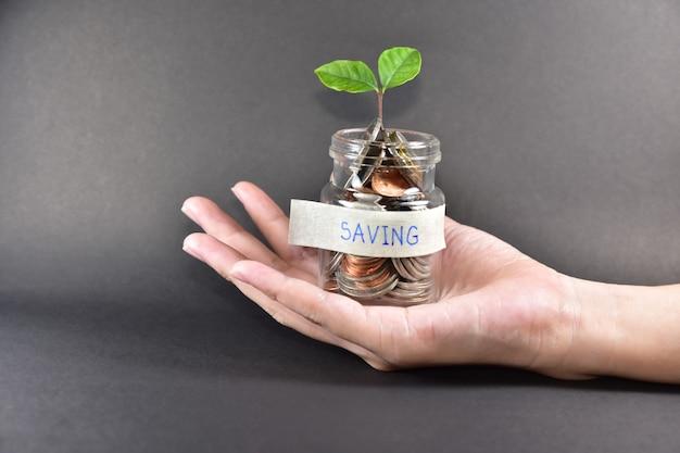 Ręki mienia pieniądze monety w słoju drzewnym oszczędzania wzrostowym pojęciu