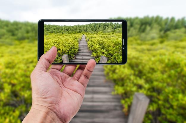 Ręki mienia smartphone natury krajobrazowy tło