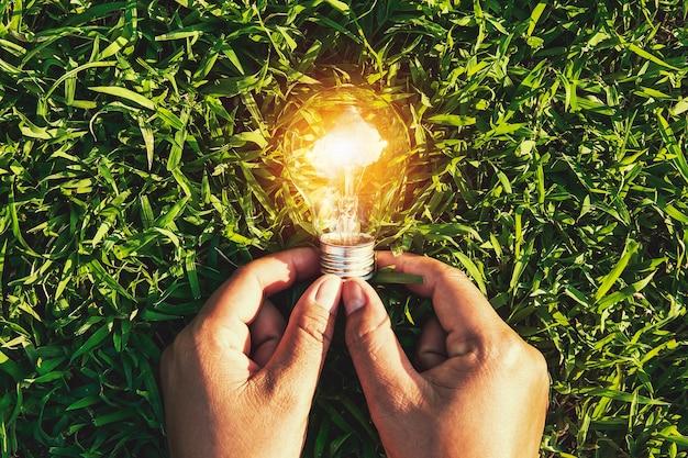 Ręki mienia żarówka na trawie. koncepcja ekologiczna energia energetyczna w przyrodzie