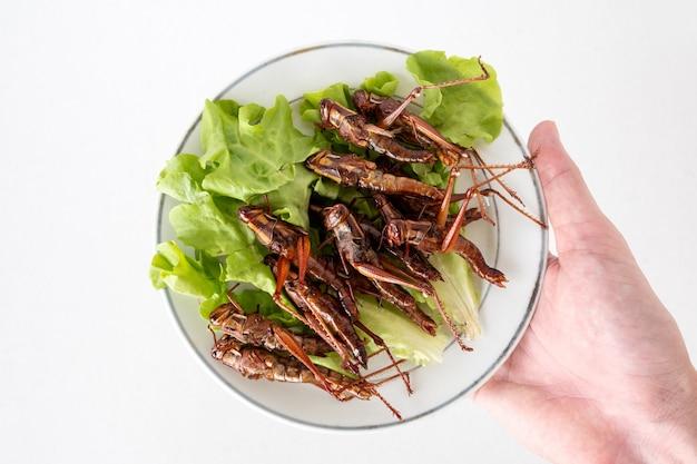 Ręki mienie smażył insekty w naczyniu na białym tle