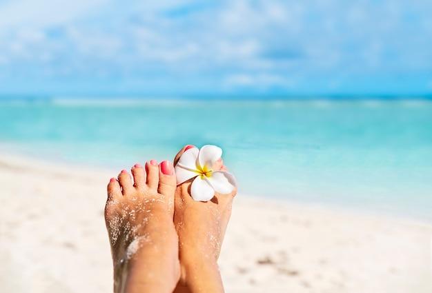 Relaksujące bose kobiece stopy z białym kwiatem frangipani nad wodą na brzegu morza, z miejscem na kopię