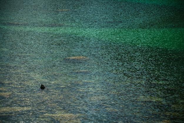 Relaksujące tło kamienistego dna w turkusowej przezroczystej wodzie jeziora polodowcowego w słońcu.