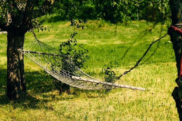 Relaksujący leniwy czas z hamakiem w zielonym lesie