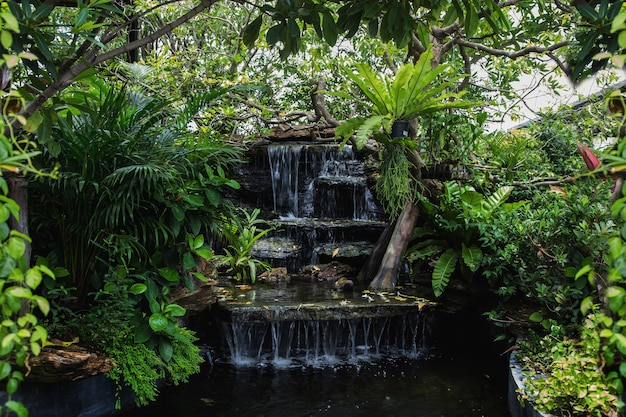 Relaksujący zakątek wodospadu w ogrodzie do dekoracji domu na świeżym powietrzu w stylu zen