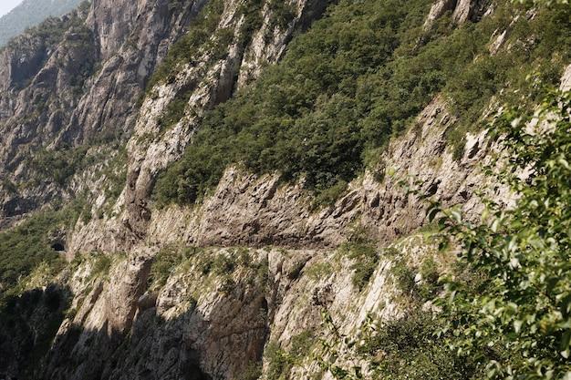 Relief skalistych gór z rosnącymi drzewami. podróże i piesze wycieczki