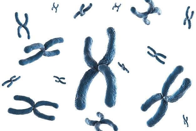 Renderowanie 3d niebieskiego chromosomu na białym tle