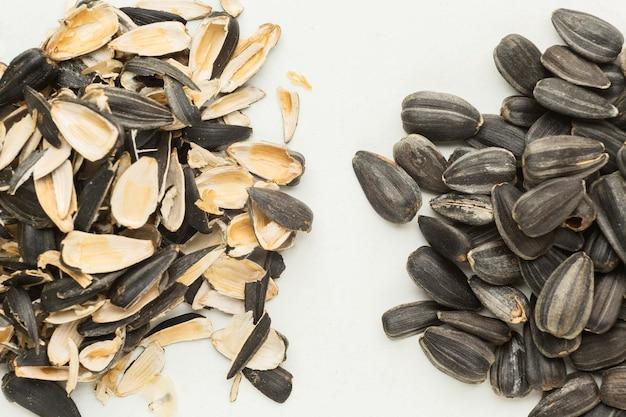 Resztki nasion resztki jedzenia