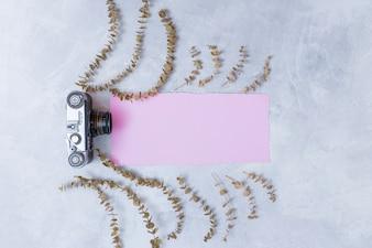 Retro kamera blisko różowego papieru między setem suchej rośliny gałązki