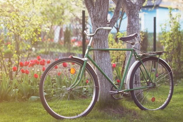 Retro rower zsrr w wiosenny ogród
