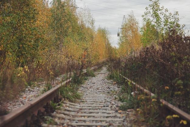 Retro stonowanych wiejskich torów kolejowych