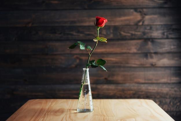 Rewolucjonistki róża w wazie na drewnianym stole