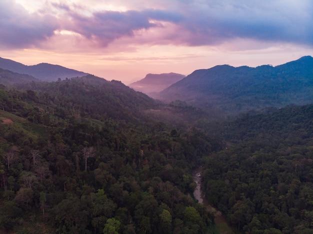 Rezerwat przyrody lasów deszczowych sinharaja sri lanka widok z lotu ptaka na zachód słońca w górach dżungla starożytny las
