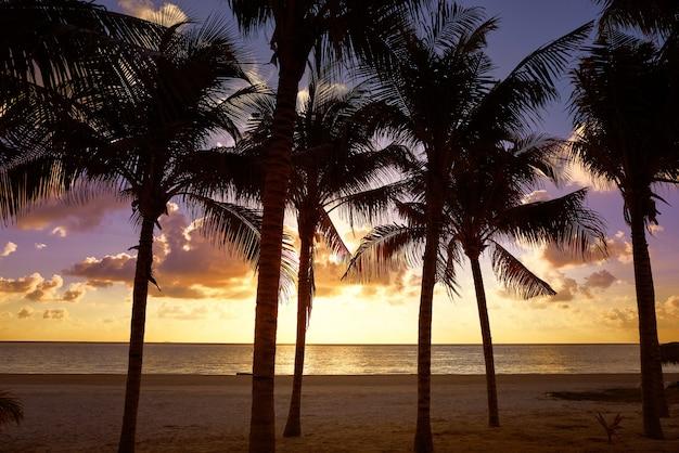 Riviera maya sunrise beach w meksyku