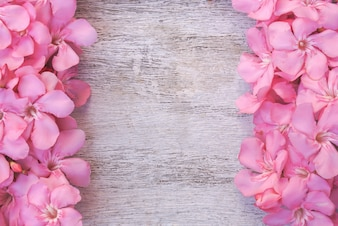Różowy kwiat na tle biały drewniany stół