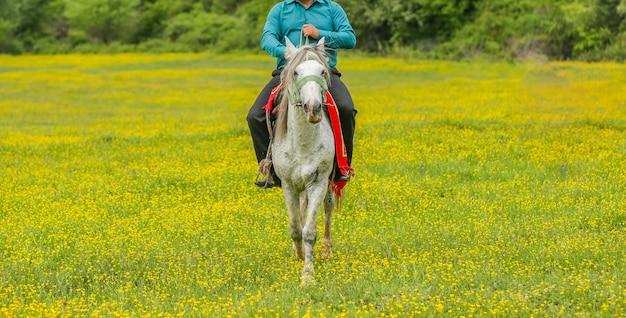 Robotnik rolny jeździ konno w strefie gospodarstwa z zieloną trawą i żółtymi kwiatami