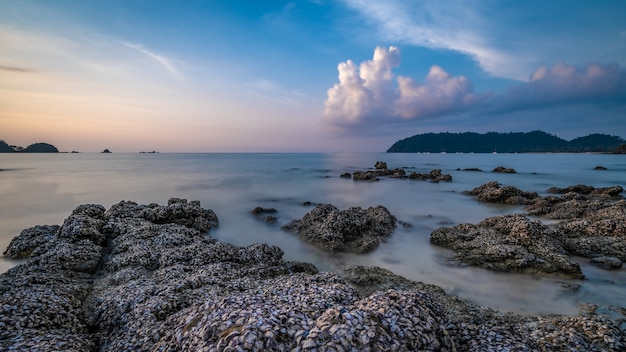 Rock sea beach