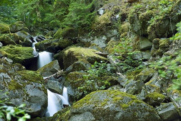 Rocky mountains creek