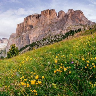 Rocky mountains dolomite