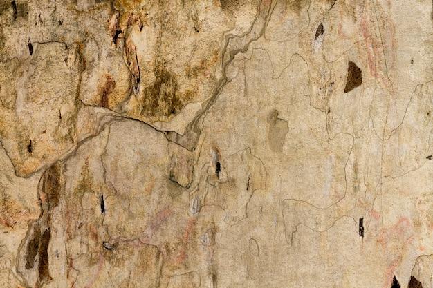 Rocznik brogujący ścienny tekstury tło