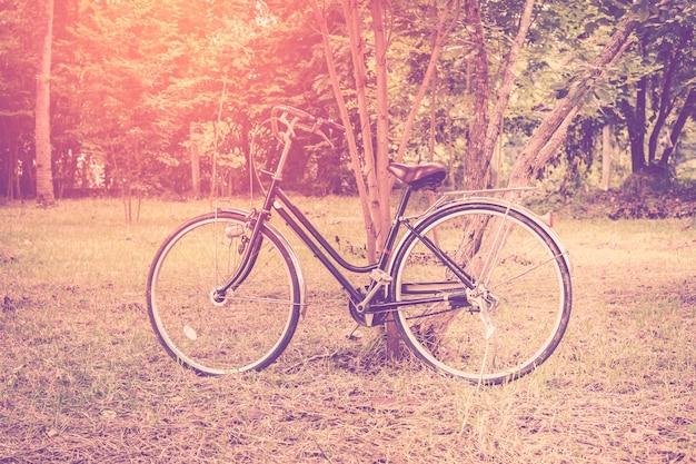 Rocznika Bicykl W Ogródzie Z światłem Słonecznym. Premium Zdjęcia