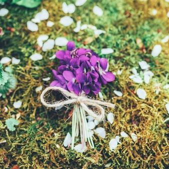 Rocznika bukiet lasowi kwiaty fiołki na tle mech, odgórny widok