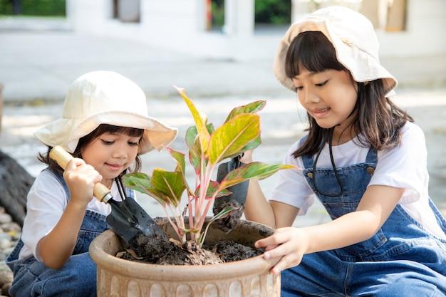 Rodzeństwo azjatka sadzi wiosenne kwiaty drzewka w doniczkach w ogrodzie na zewnątrz domu, wychowanie dziecka na łonie natury. dbanie o nowe życie. koncepcja wakacje dzień ziemi. światowy dzień ziemi. ekologia.