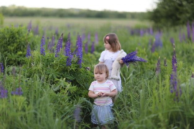 Rodzeństwo dziewcząt chodzi wśród wysokich kwiatów, dzieciństwo