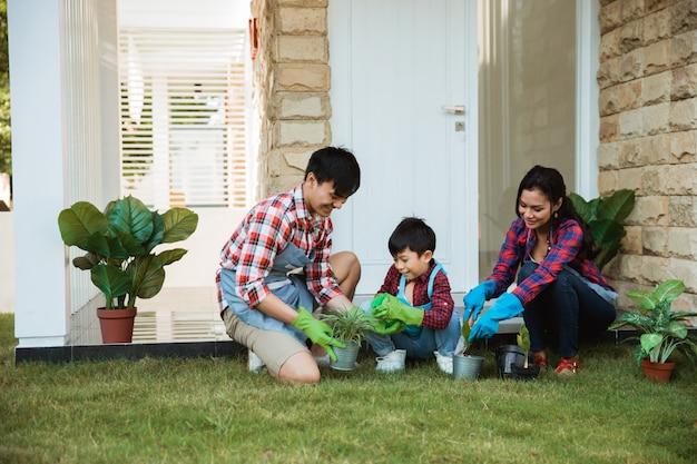 Rodzina i dziecko rozpylają młode rośliny w doniczce w domu