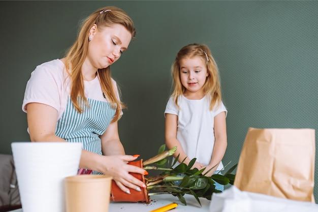 Rodzina młodej kobiety blondynka i 5-letnia dziewczyna przeszczepia rośliny domowe w domu. matka i córka spędzają razem czas na ogrodnictwie.