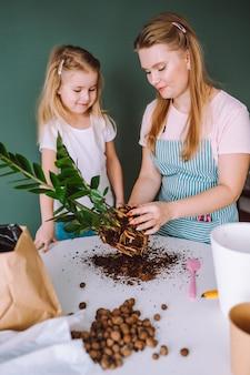 Rodzina młodej kobiety blondynka i 5-letnia dziewczyna przeszczepia rośliny domowe w domu. matka i córka spędzają razem czas, pracując w ogrodzie.