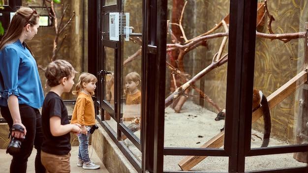 Rodzina w zoo patrzy na zwierzęta przez szkło bezpieczne