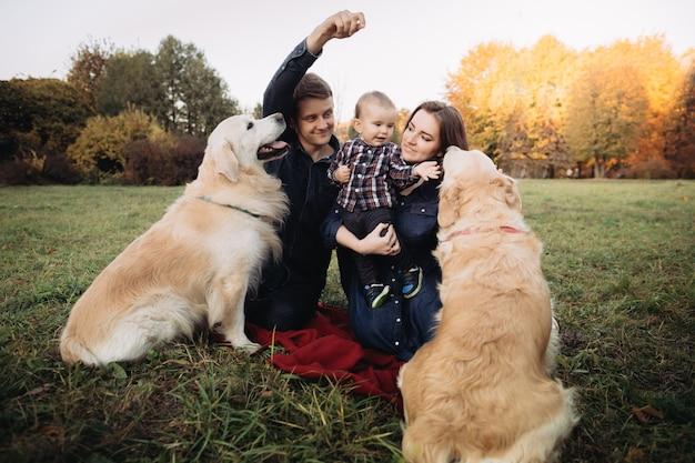 Rodzina z dzieckiem i dwoma golden retrieverami w jesiennym parku