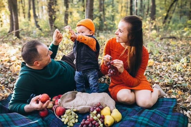 Rodzina z ich małym synem ma pinkin w parku