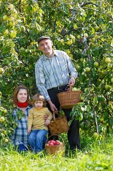 Rodzinny ogród zbiorów pod jabłonią