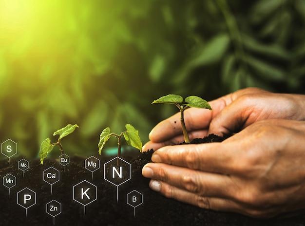 Rola Składników Odżywczych W życiu Roślin Gleba Z Cyfrową Ikoną Składników Mineralnych Premium Zdjęcia