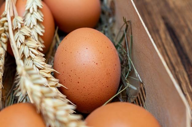 Rolni brown jajka z słomą w brzozy barkentynie boksują drewnianego tła zakończenie up