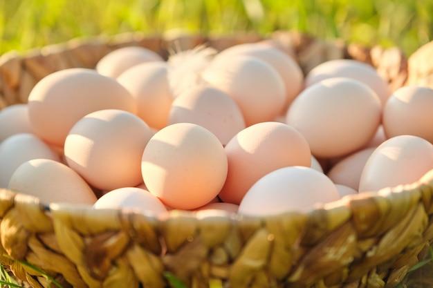 Rolni świezi kurczaków jajka w koszu na trawie w naturze, zdrowy naturalny jedzenie