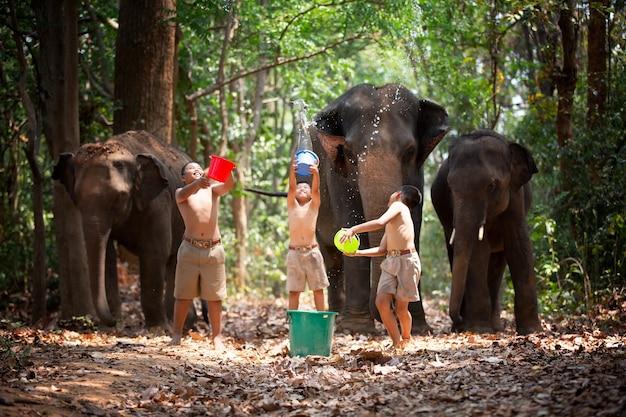 Rolnicy i kultura azjatycka słoni