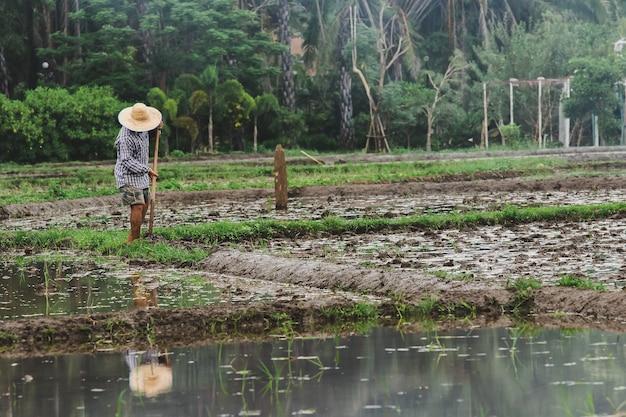 Rolnicy kopią glebę w ramach przygotowań do sadzenia.