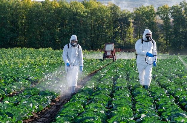 Rolnicy rozpylający pestycydowe maski polowe zbierają chemię ochronną dwa