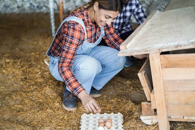 Rolnicy zbierający organiczne jaja w kurniku - skupić się na twarzy kobiety