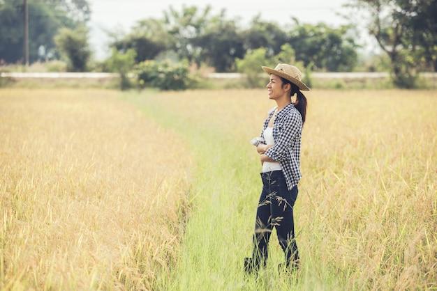 Rolnik jest na polu ryżowym i opiekuje się ryżem.