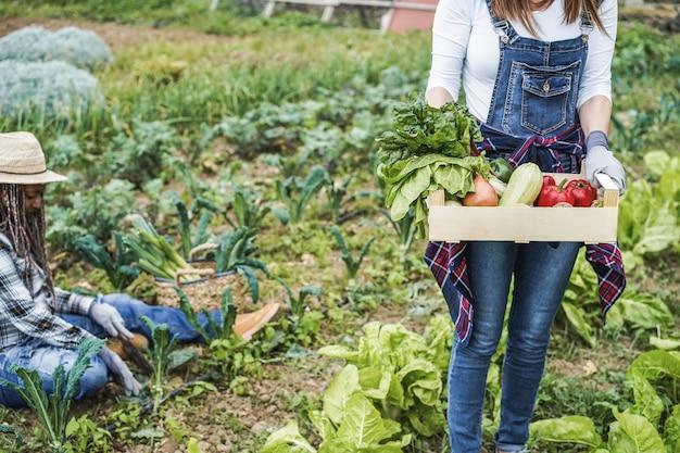 Rolnik kobieta trzymająca drewniane pudełko ze świeżymi organicznymi warzywami