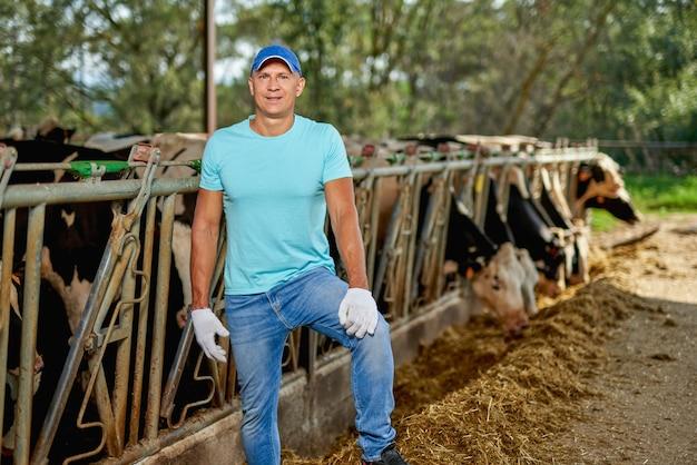 Rolnik mężczyzna pracuje w gospodarstwie z krowami mlecznymi.