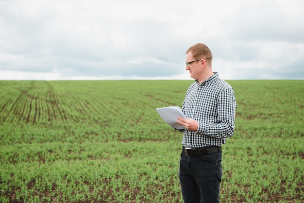 Rolnik na grochowym polu. koncepcja rolnictwa. rolnik pracuje w polu