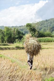 Rolnik niosący słomę.